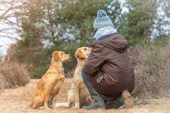 telepathische Tierkommunikation und Reiki in Stolberg bei Aachen